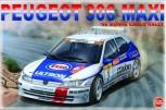Peugeot 306 MAXI 96 Monte Carlo Rally