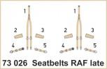 Sicherheitsgurte RAF spät - 1:72